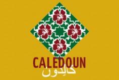 Visuel_site_caledoun1
